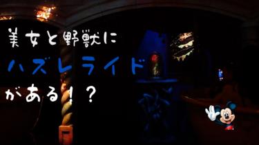 【ネタバレあり】新アトラクション美女と野獣にはずれライドがあるって本当?!ライドの特徴を徹底調査!